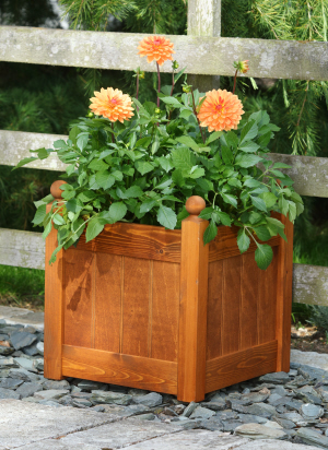 planter stained lifestyle